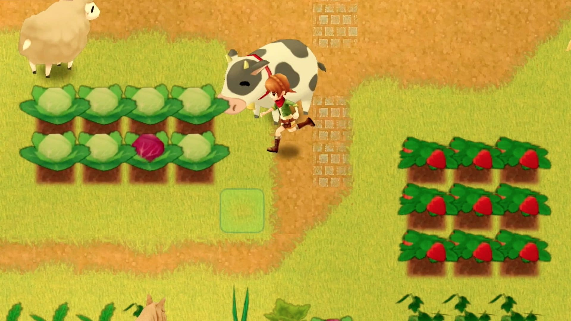 Harvest Moon Mad Dash - Ongame Network